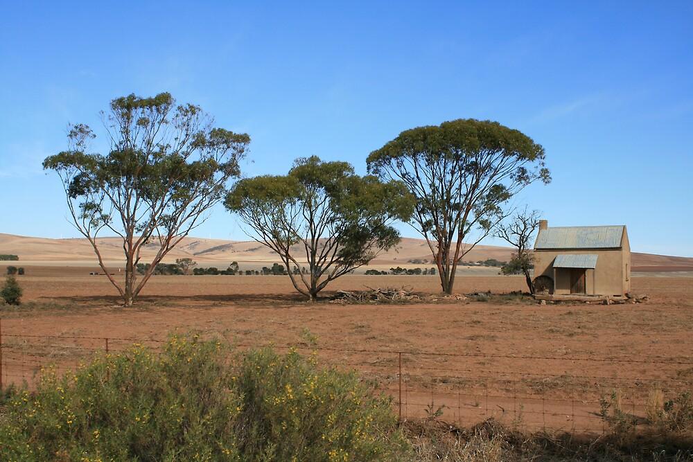 farmland by David538