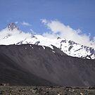 Andes by Francisco Larrea