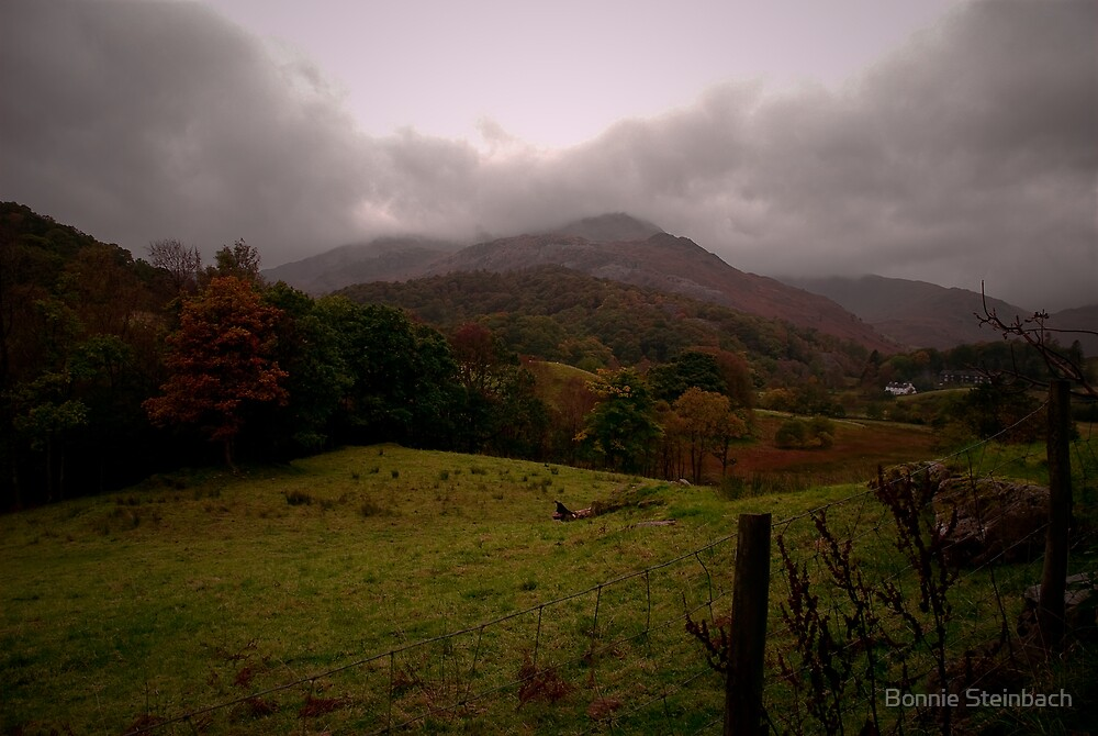 Autumn Countryside by Bonnie Steinbach