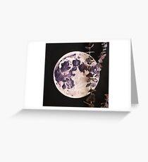 Eucalyptus Moon Greeting Card