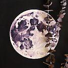 Eucalyptus Moon by PixelGum