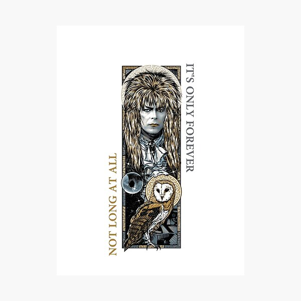 Labyrinth Collage Photographic Print