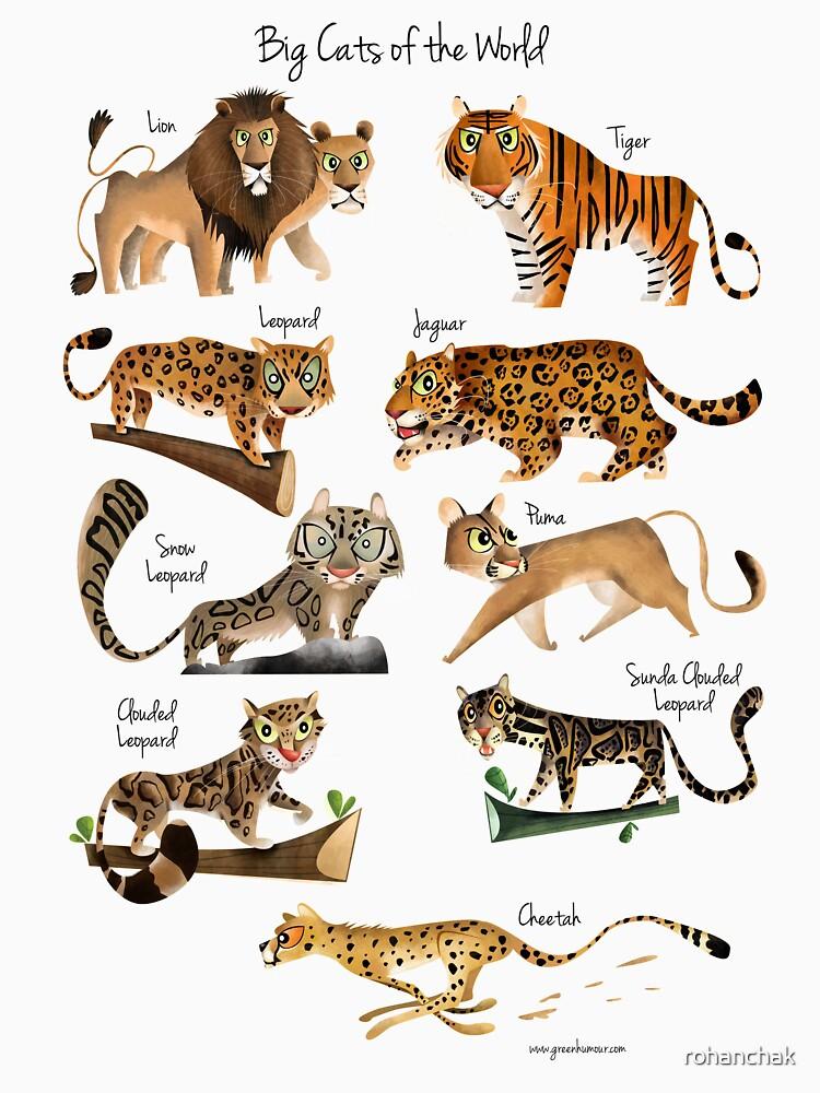 Große Katzen der Welt von rohanchak