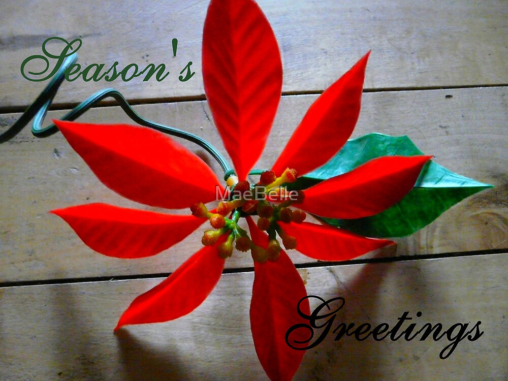 Season's Greetings, Card by MaeBelle