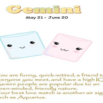 Gemini Personality Gift by KawaiiNMore