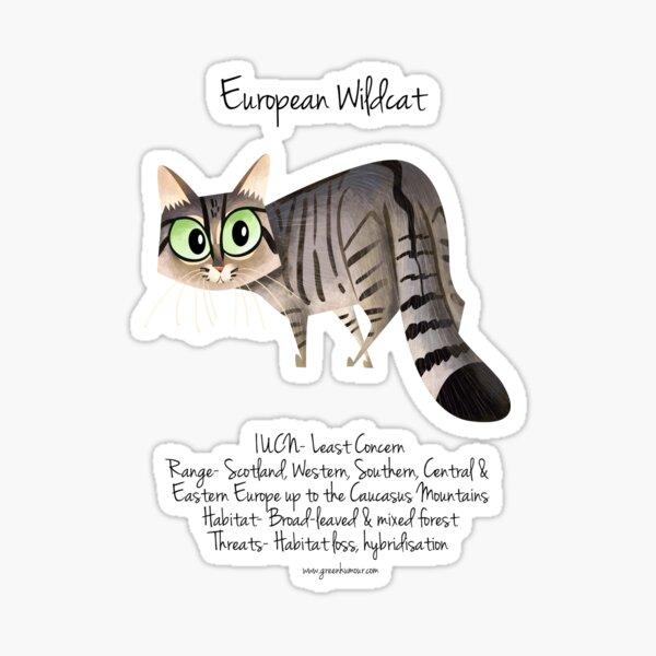 European Wildcat Sticker