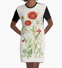 Botanical illustration: Poppy by David Dietrich – State Library Victoria Graphic T-Shirt Dress
