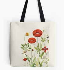 Botanical illustration: Poppy by David Dietrich – State Library Victoria Tote Bag