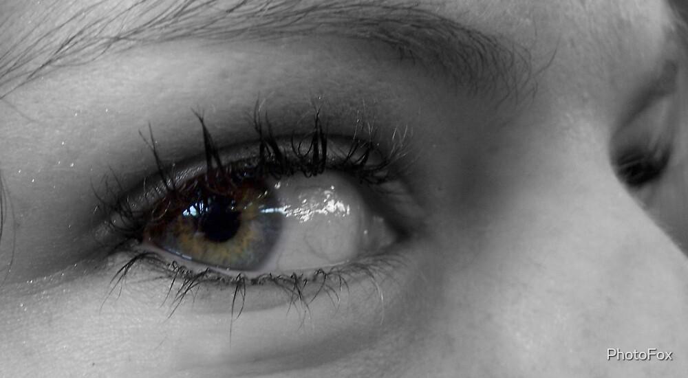 I Saw by PhotoFox