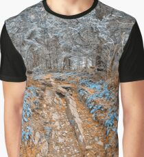 Frozen Appalachian Trail Graphic T-Shirt