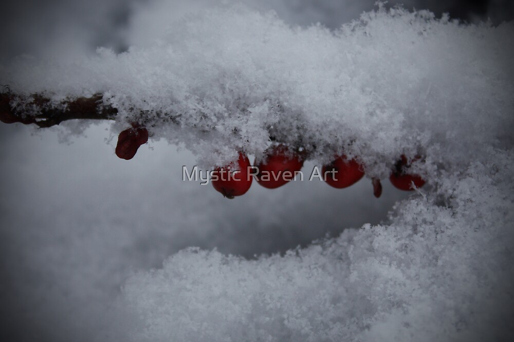 Snowflakes and Berries by Mystic Raven Art