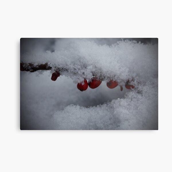 Snowflakes and Berries Metal Print