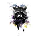 Raccoon Galaxy by badamg