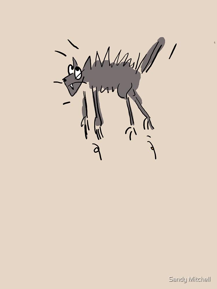 miaow!! by sandymitchell