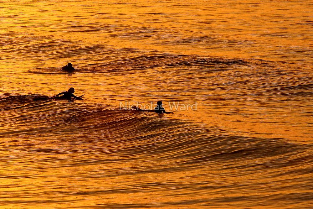 Surfing at Sunset, Gold Coast  by Nicholas Ward