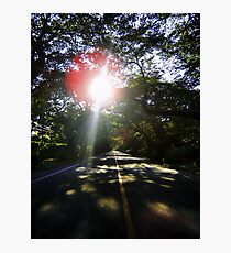 Sun Light, Sun Bright Photographic Print
