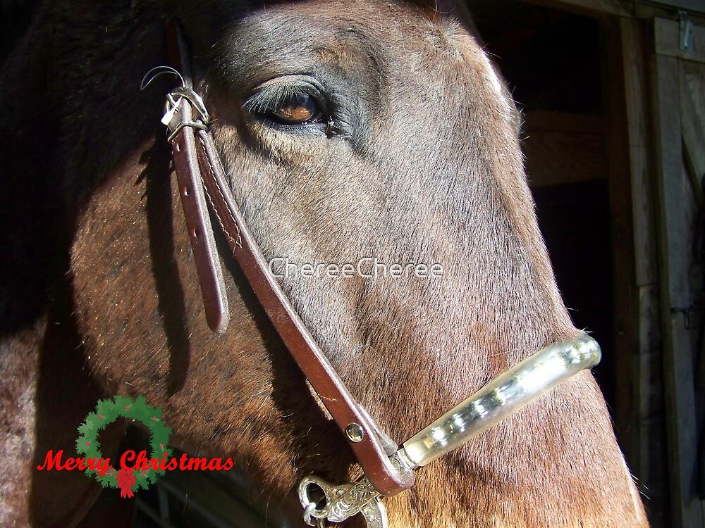 Horse Christmas by ChereeCheree