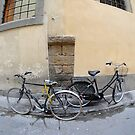 2 bikes pass in Florence by PeteG