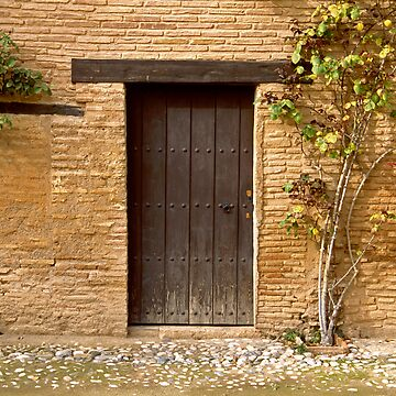Door and Brick Wall. by Fergyphotos