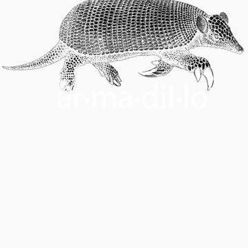 White Armadillo by Zehda