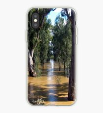 Flooded Plains iPhone Case