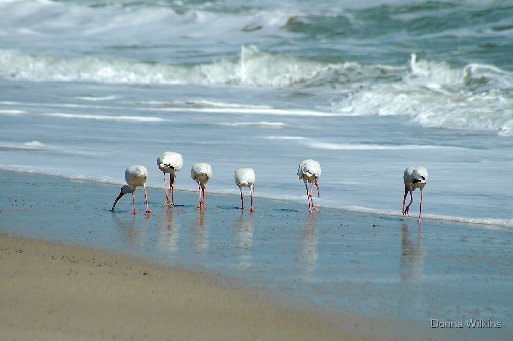 All In a Row by Donna Wilkins