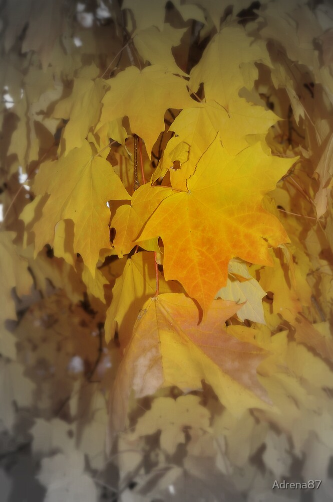 Autumn Leaves Yellow by Adrena87
