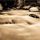 Taylor River (2) by Josh Dayton