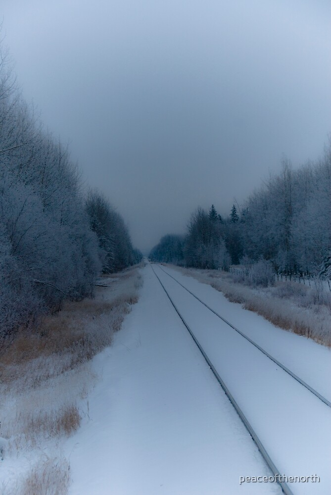Cold Tracks by peaceofthenorth