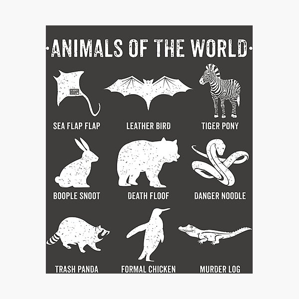 Simple Vintage Humor Funny Rare Animals of the World Photographic Print