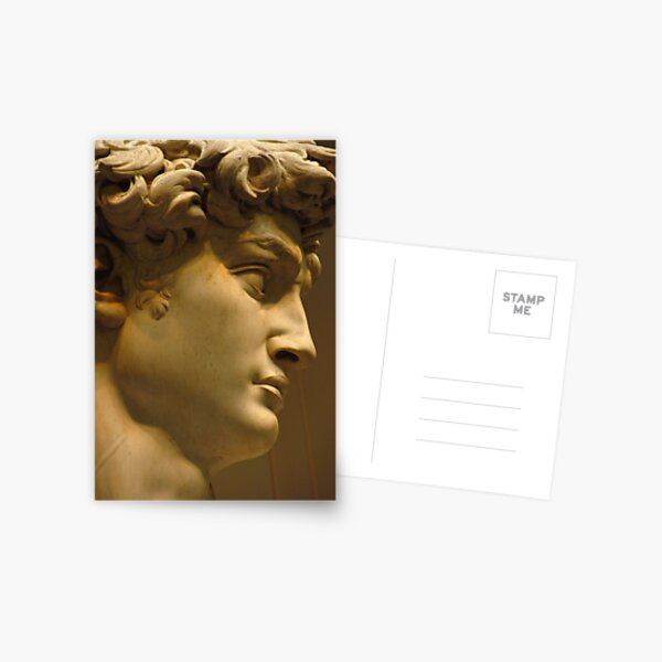 Michelangelo Study; The Face Postcard