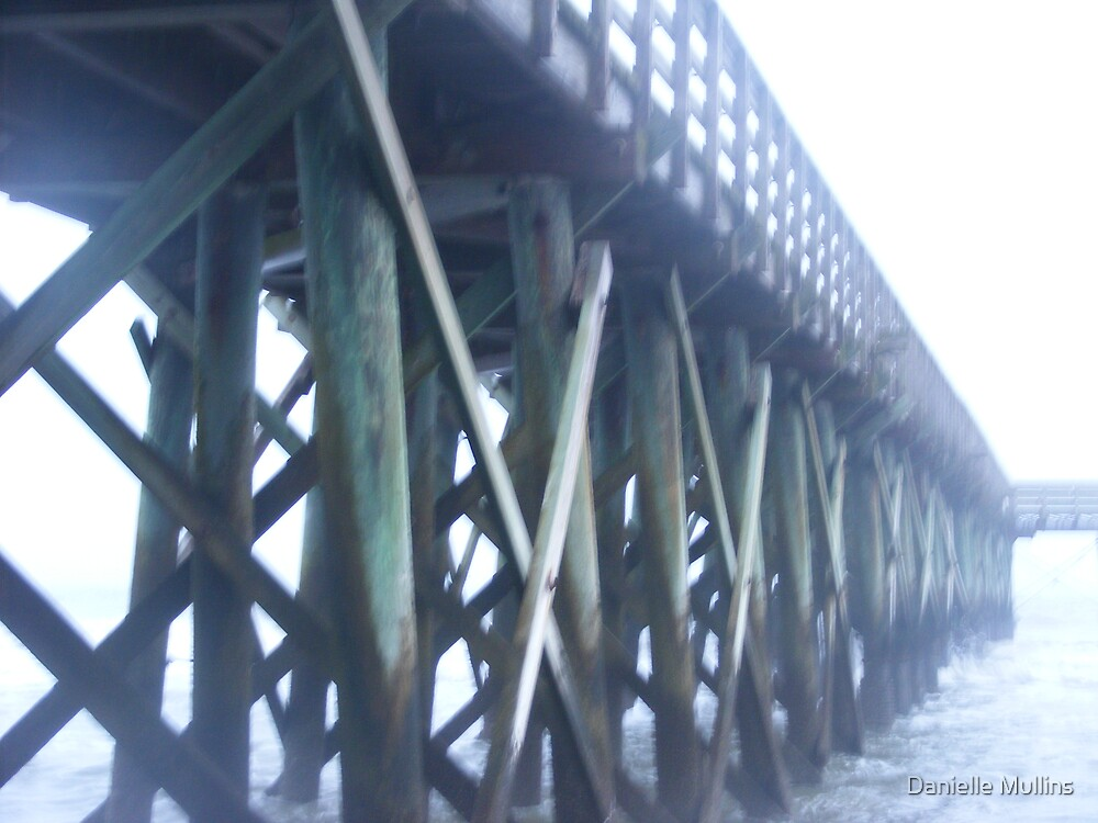 boardwalk from a different angle by Danielle Mullins