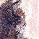 Cat Nap by AngieDavies