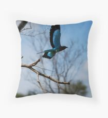 Glossy Starling Throw Pillow