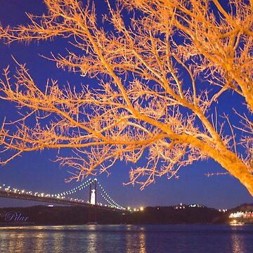 night river view by terezadelpilar