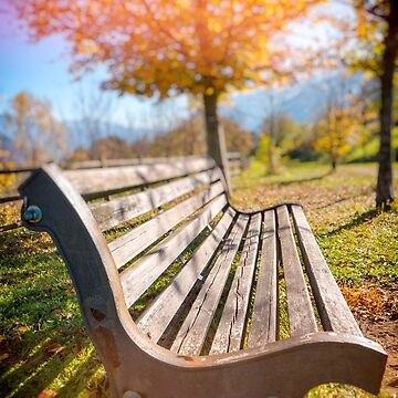 Bench and fall tree by sil63