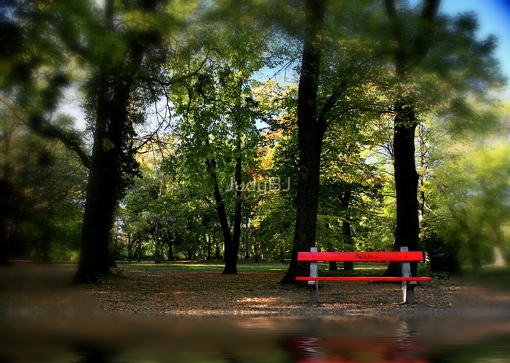 The red bench by JudyBJ
