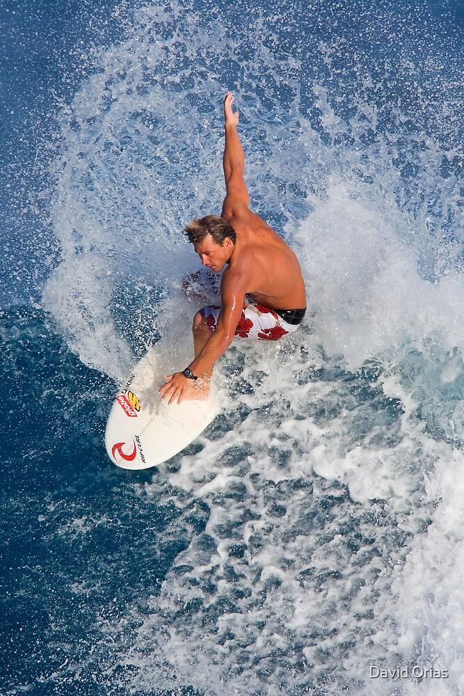 Hawaiian Board Shorts by David Orias