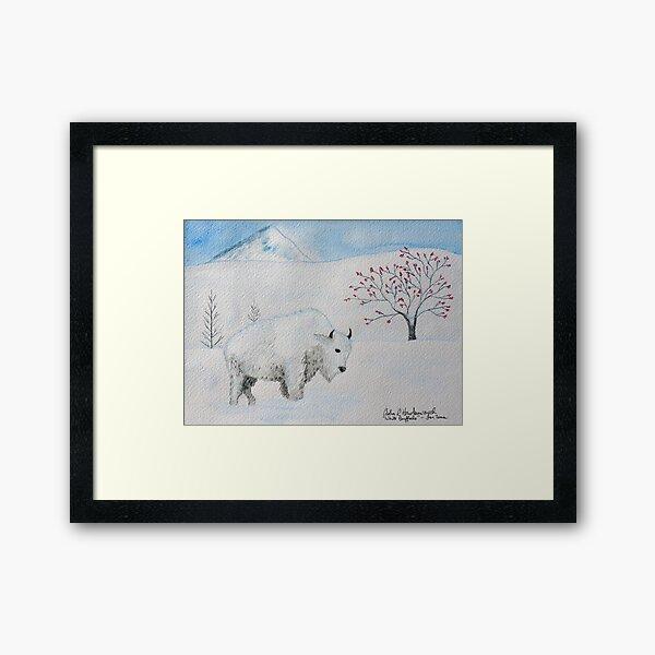 White Buffalo Framed Art Print
