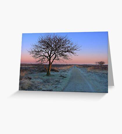 Sunrise Morning, Fochteloerveen in Winter Greeting Card