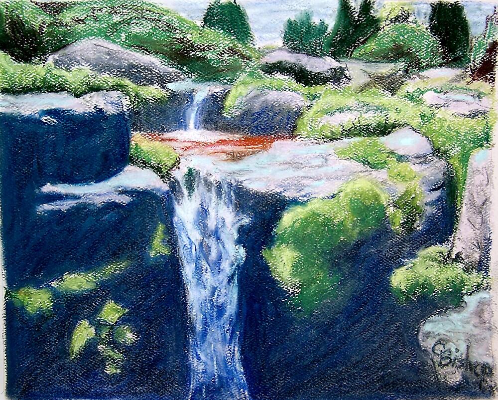 Olbrich Garden Falls by Carolyn Bishop