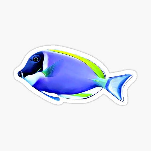 Powder Blue tang saltwater reef fish Sticker