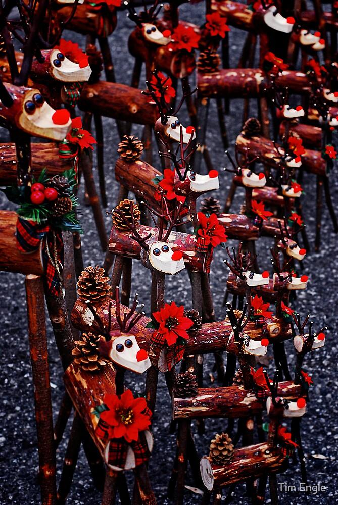Reindeer by Tim Engle