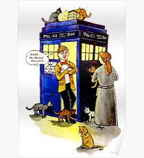 Cat Lady Companion Poster
