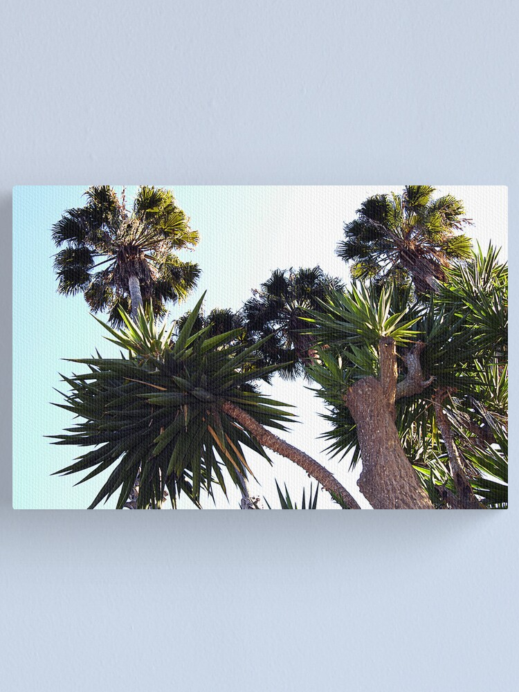 Alternate view of Southern California Sky Canvas Print