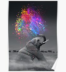 Wahre Farben im Inneren Poster