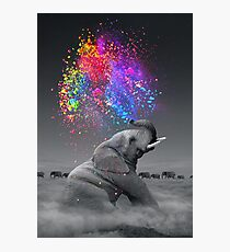 True Colors Within Photographic Print