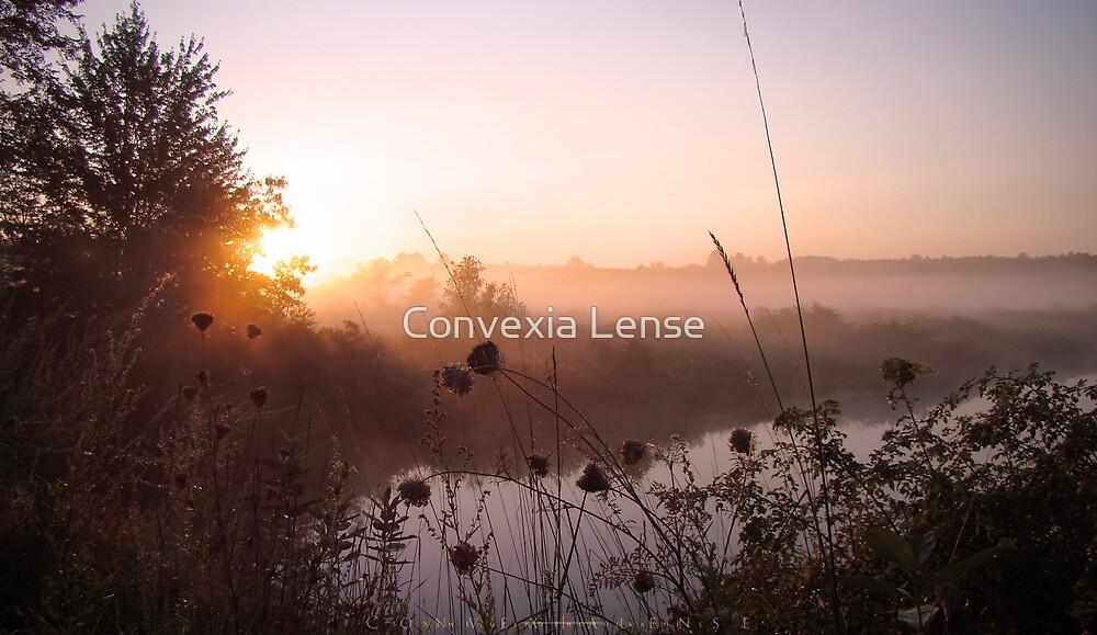 Cadmium Sunrise #4 by Convexia Lense