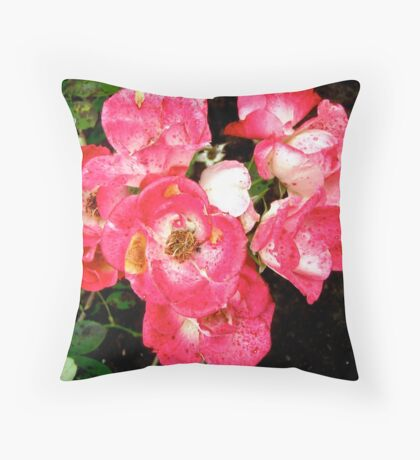 Governor General's roses 5 Throw Pillow