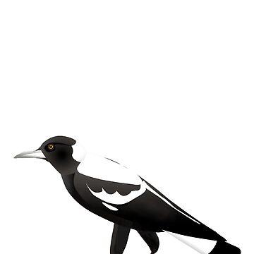 Australian Magpie by lynchmob